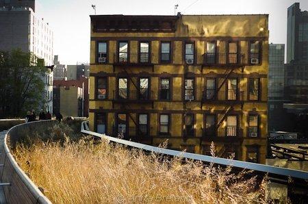 Autumn on the High Line, Manhattan, New York