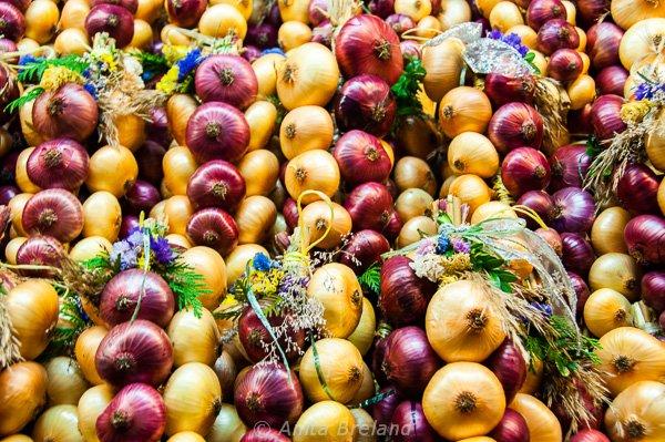Onion garlands